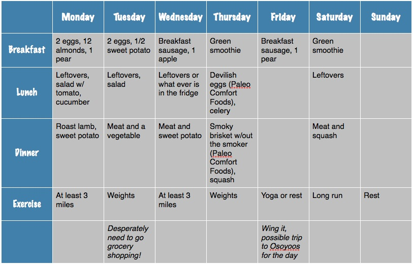 Weekly Exercise Plan Template